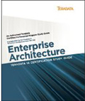 Teradata 14 Certification Study Guide Enterprise Architect Exam TE0-146-Steve Wilmes, David Glenday